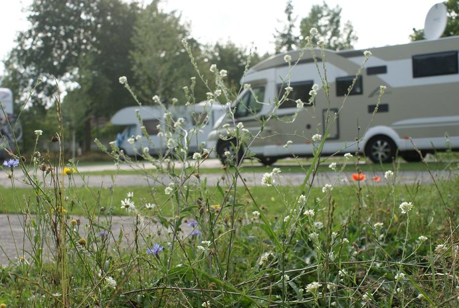 Camper veld