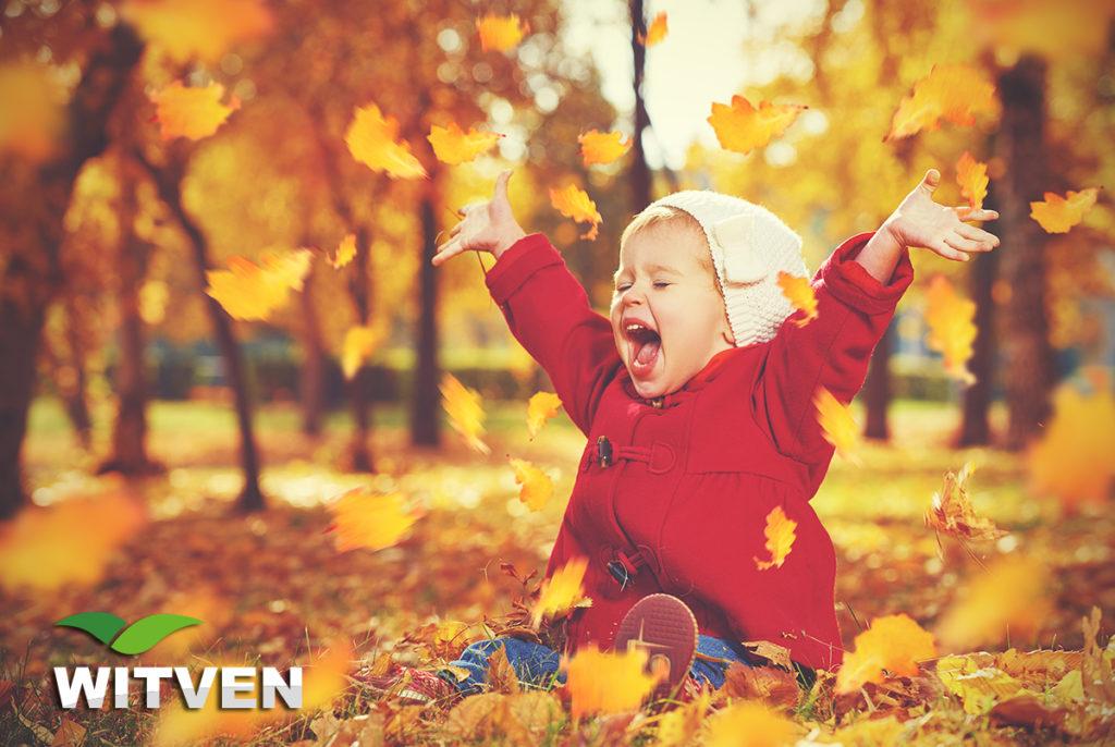 Witven_Veldhoven_vier de herfst
